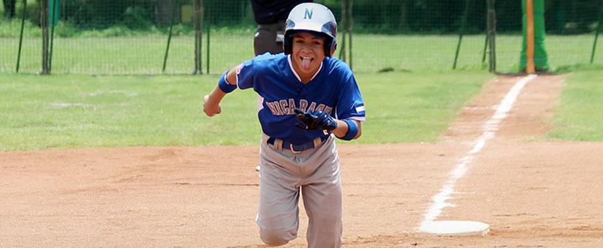 Beisbol se impone en elecciones de ACDN
